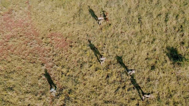 Behind the Scenes with The Grumeti Fund Anti-Poaching Unit